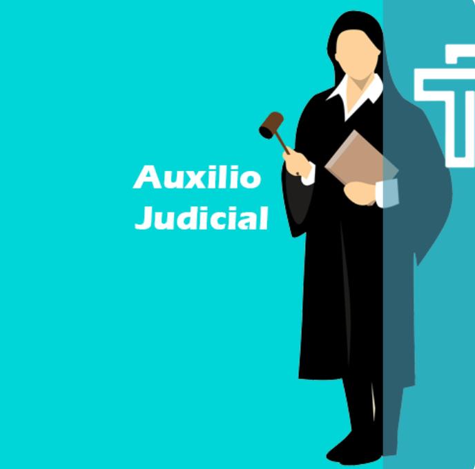 auxilio judicial traintop